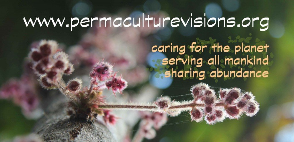 permaculture_visionsORG