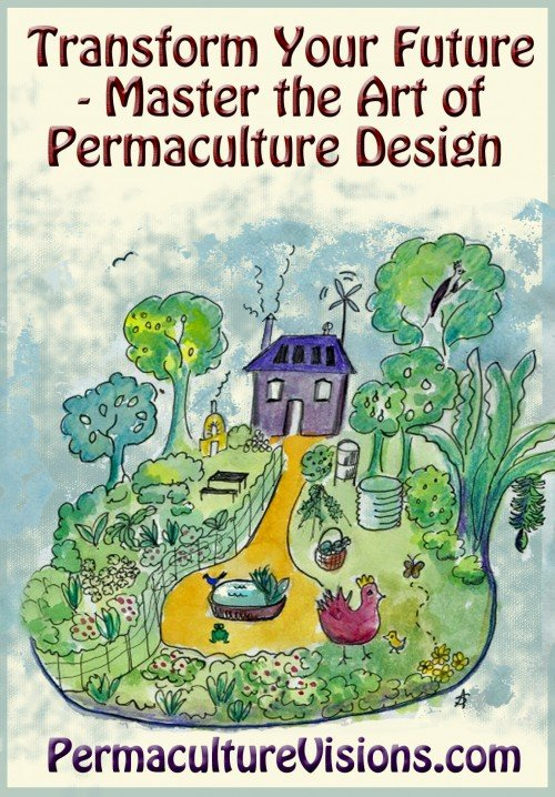 transform your future Permaculture Visions ADD