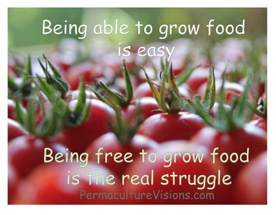 free_Permaculture-Visions_sm